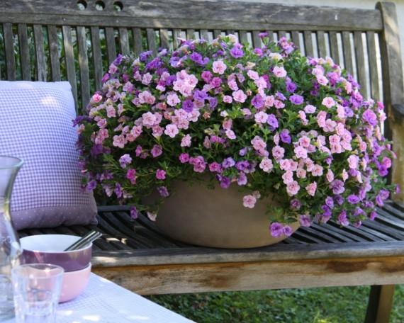 Trixi® Pink Petticoat